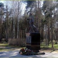 Памятник военным дрессировщикам и собакам :: Вера
