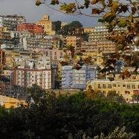 Верхний Неаполь из деревьев парка Лорезо :: M Marikfoto