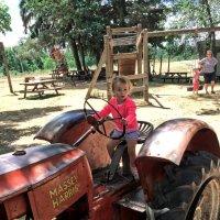 Прокати нас на тракторе.... :: Alexander Dementev