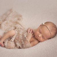 Фотосессия новорожденного Йошкар-Ола :: Катя Грин