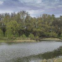 В парке г.Александрова :: Сергей Цветков