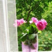 розы на день рождения :: Анна Воробьева