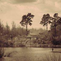 Игра у озера в полдень (вариант) :: Сергей В. Комаров