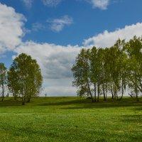 Весна :: Николай Мальцев