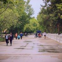 Порогулка по весенней набережной г. Павлодара :: TATYANA PODYMA