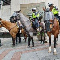 Робокопы на лошадках :: Ingwar