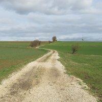 Бавария :: tgtyjdrf