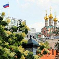 ритмы города-все расцветает и пахнет :: Олег Лукьянов