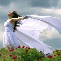 Мечты сбываются! :: Валерий Лазарев