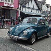 Volkswagen Beetle :: Natalia Harries
