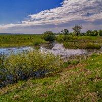 Берега реки Клязьмы 2 :: Андрей Дворников