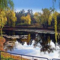 Осенний парк :: Мария Богуславская