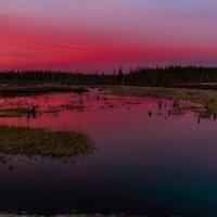 Майский вечер в Западной Сибири :: Дмитрий Сиялов