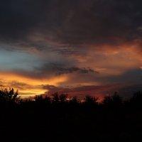 После дождя :: Дина Дробина