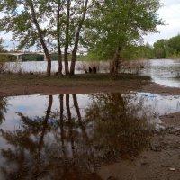 Вода падает :: Александр Алексеев