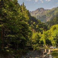 Абхазия. :: Ruslan