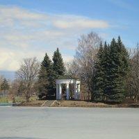 В парке на Крестовском острове. :: Валентина Жукова