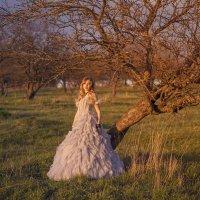Весенний сад :: Женя Рыжов