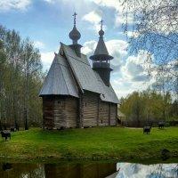 Кострома :: Антонина Владимировна