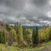 В горах низкая облачность :: anatoly Gaponenko