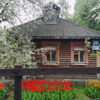 Домик пчеловода ) :: Татьяна Тимофеева