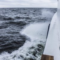 Белое море :: Алексей Горский