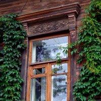 окно, увитое плющом :: Наталья Сазонова