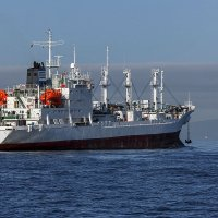 Панамкое судно заходит во Владивосток :: Абрис