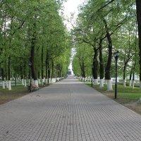 Парк им. Пушкина :: Andrew