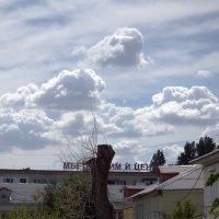 Облачный пейзаж :: Валерий Лазарев