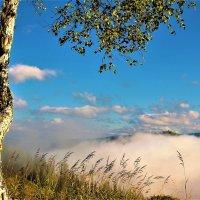 Над облаком тумана :: Сергей Чиняев