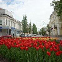 весна...тюльпаны...город :: Любовь *