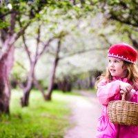 К бабушке по цветущему саду :: Екатерина Сусина