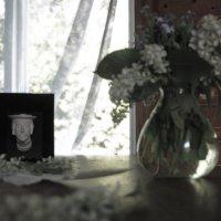 Находки старого дома :: liudmila drake