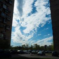 Утренний взгляд на дневную перспективу :: Юрий Плеханов