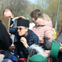 """""""Вот  эта  шляпка .  мне подходит!"""" :: Виталий Селиванов"""