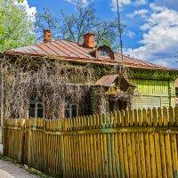 За забором в провинции :: Юрий Яловенко