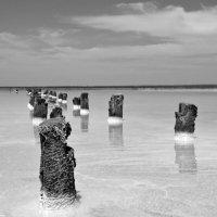 Озеро Эльтон 5 :: Михаил Крюков