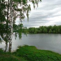 У реки :: Лариса Рогова