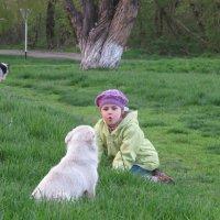Человек собаке друг :: Дина Дробина