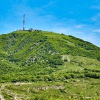 Гора Машук :: Николай Николенко