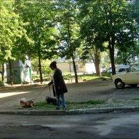 На свежем воздухе. :: Нина Корешкова