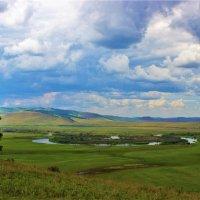 Луга в Чулымской долине :: Сергей Чиняев