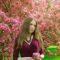 А яблони безропотно цветут. :: Сергей Гутерман