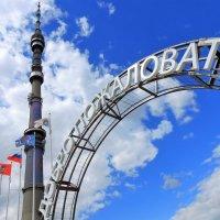 Добро пожаловать на Останкинскую башню :: Елена Ом