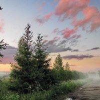 Легкий вечерний туман :: Лара Симонова