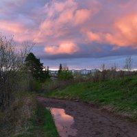 Небо на закате. :: Наталья