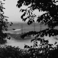 Туманное утро :: Юрий Гайворонский