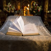 тихое чтение :: Мария Корнилова
