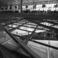 здание банка по проекту архитектора Нормана Фостера. Гонконг :: Sofia Rakitskaia
